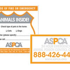 ASPCA Sticker